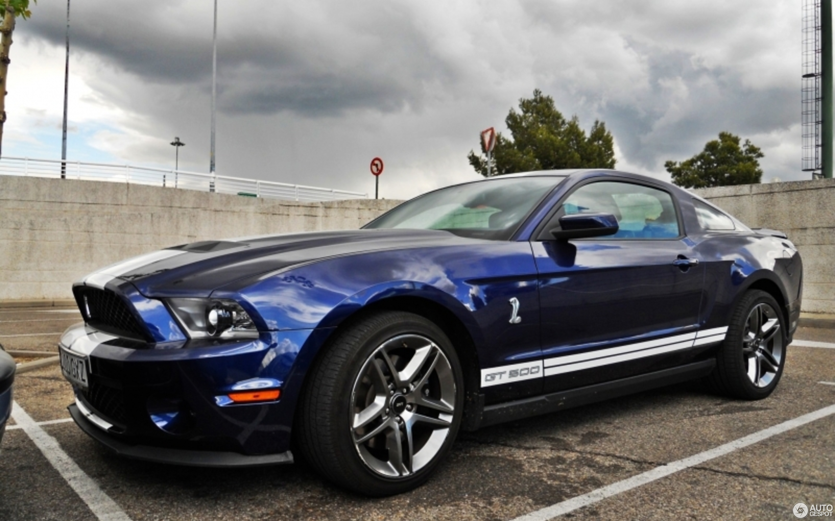 ford mustang shelby gt500 2010 3 may 2011 autogespot. Black Bedroom Furniture Sets. Home Design Ideas